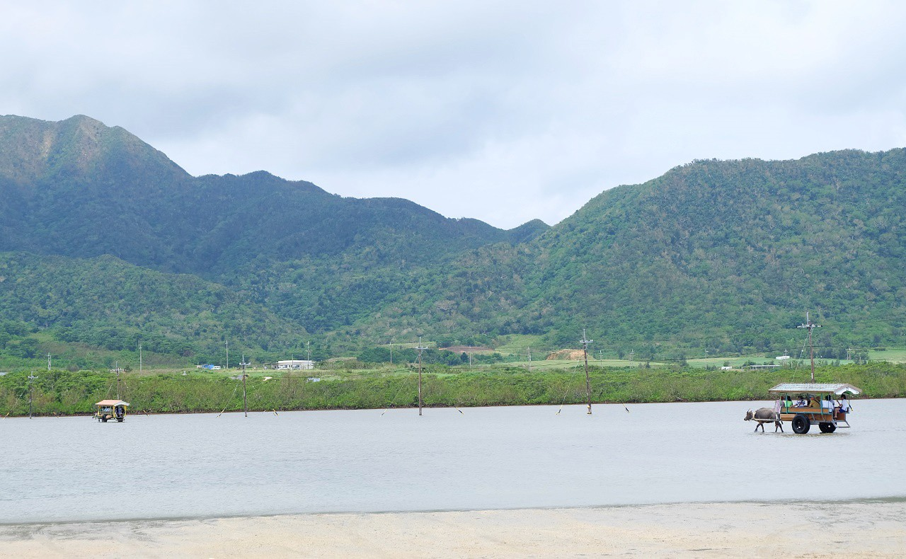 西表島の山並み