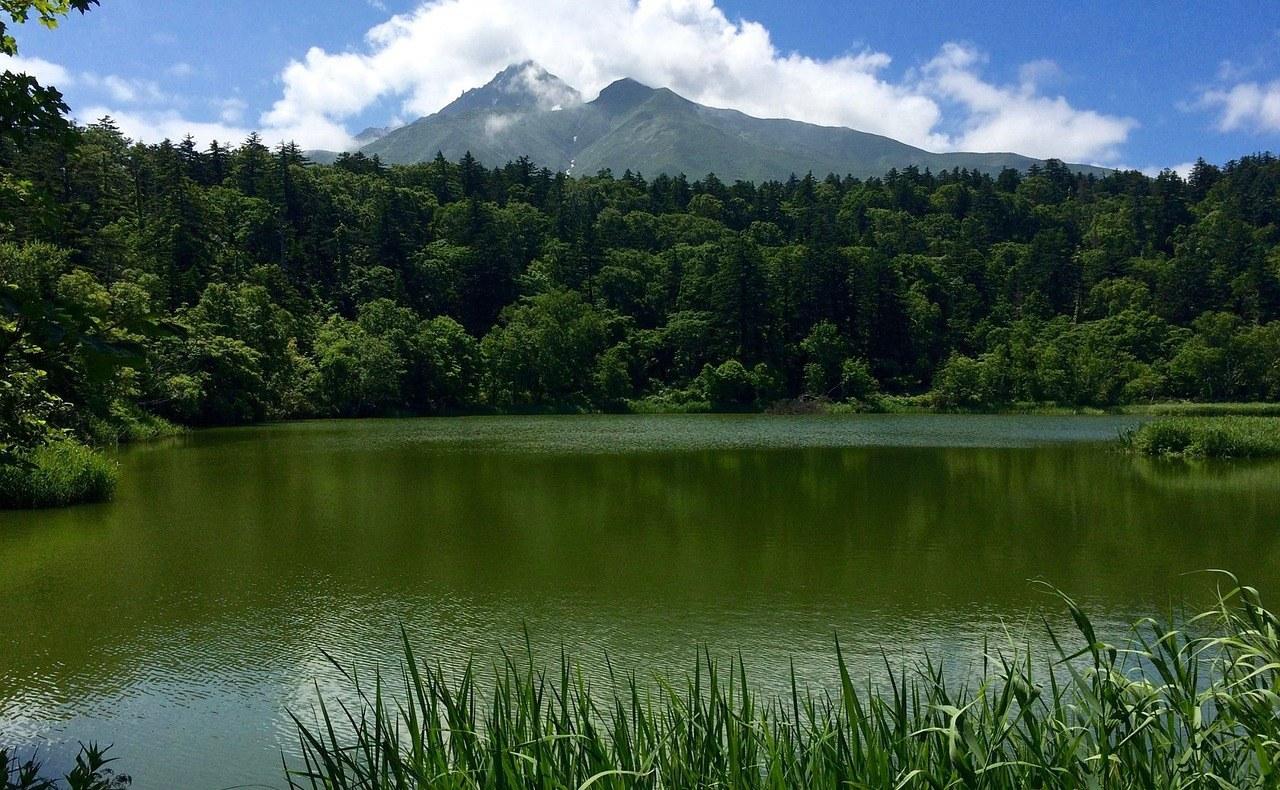 姫沼の景色