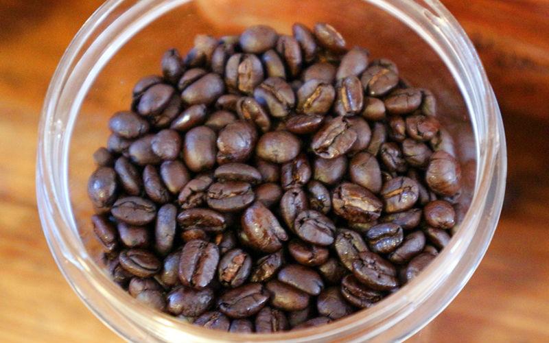 徳之島コーヒーの豆